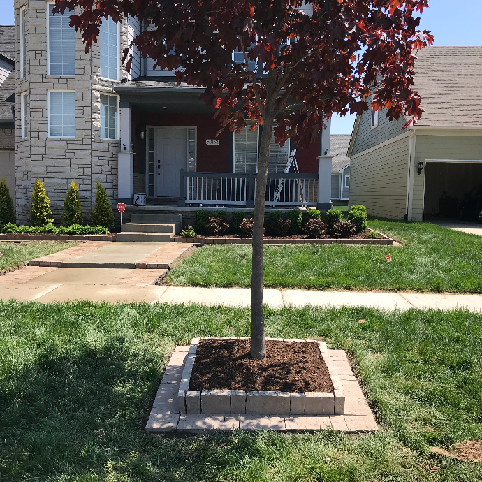 Tree Mulching Services in Shelby Township, Michigan