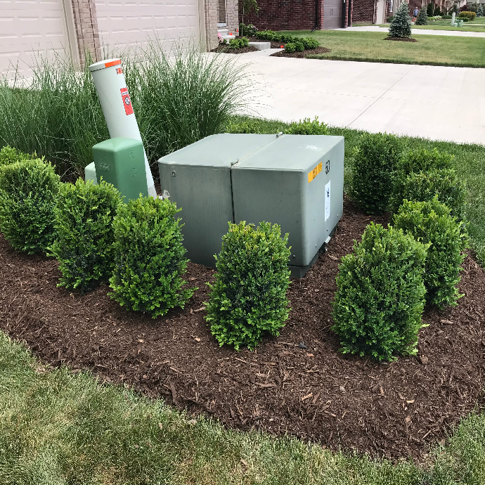 Hiding Electrical Box with Landscape